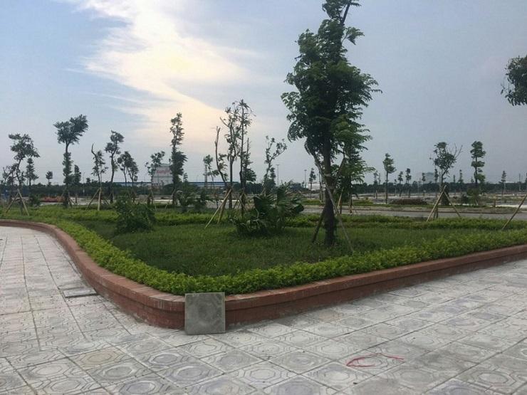Hệ thống cây xanh và hồ nước đã được hoàn thiện và đồng bộ tại Green Park
